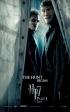 Harry Potter i Insygnia Śmierci - part I (plakaty)