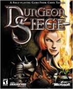Pudełko Dungeon Siege